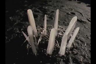 """Skivtips: """"Biophilia"""" – Björk"""