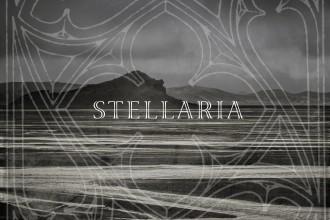 Stellaria_AllMyNights