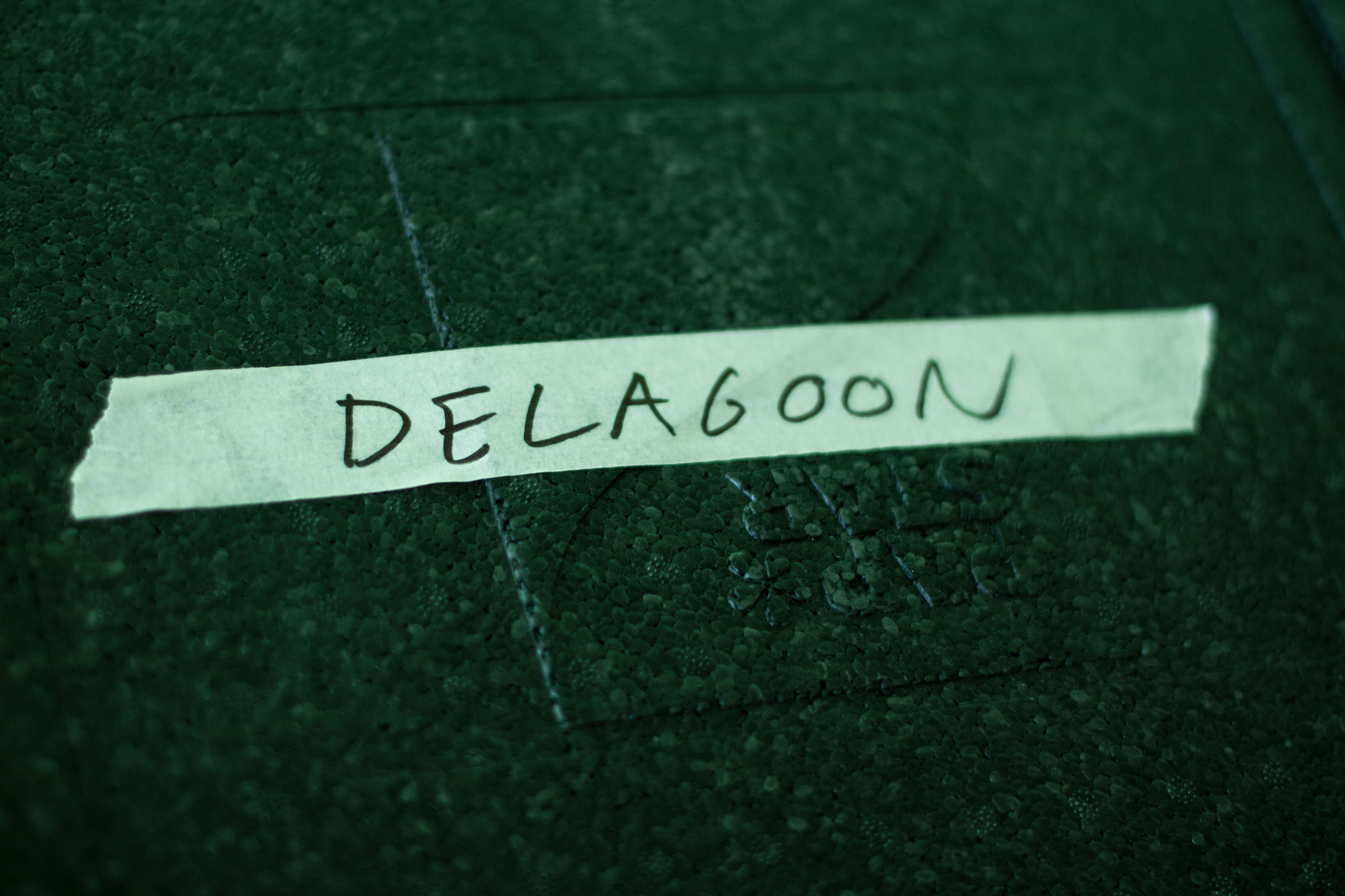 Delagoon-1