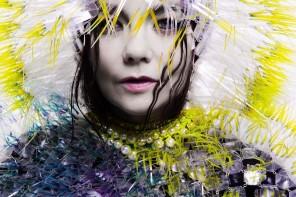 Björk, Vulnicura album art_1